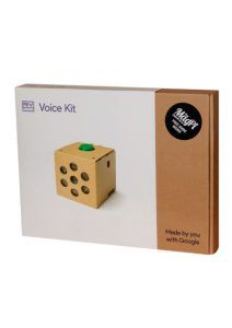 Google Voice Kit